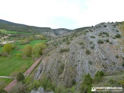 Yacimiento Clunia Sulpicia - Desfiladero de Yecla - Monasterio Santo Domingo de Silos - Sierra de la